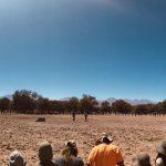 Contatto nel deserto di Atacama 2019: il report di Ricardo Gonzàlez
